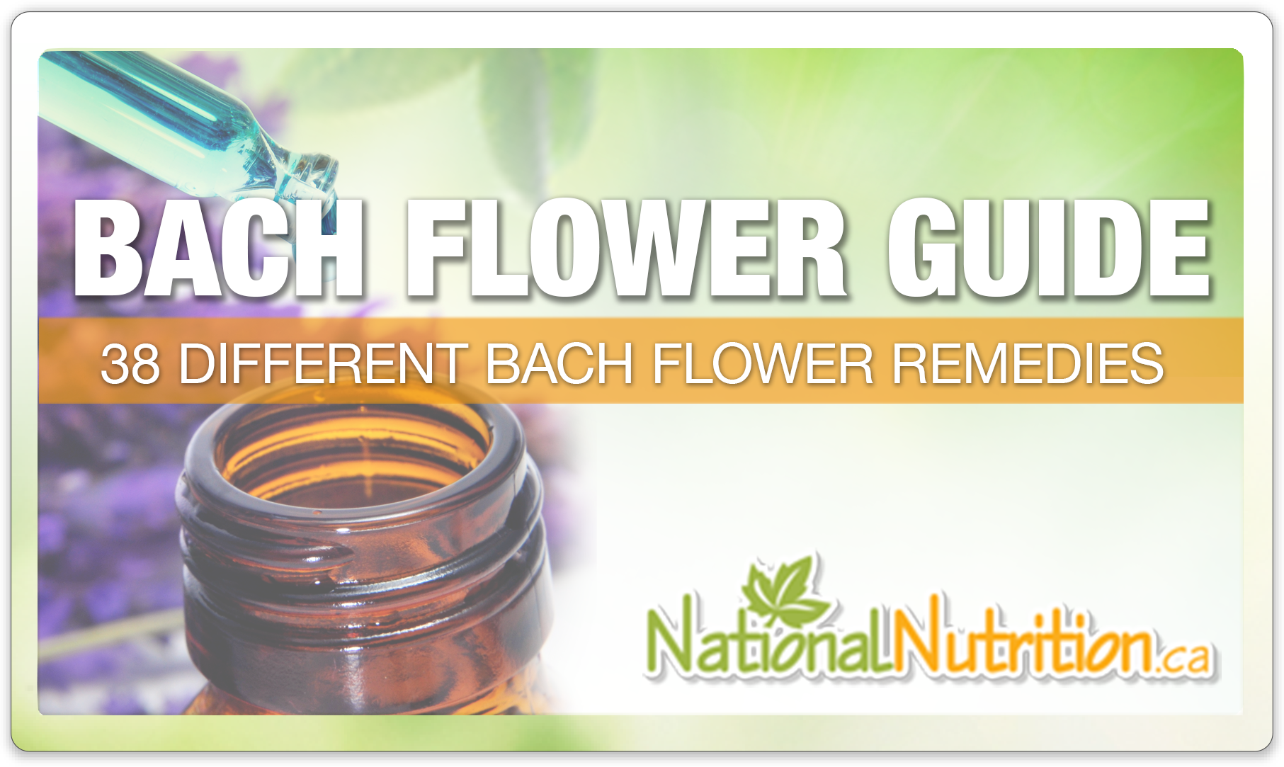 a Guide to Bach Flower Remedies - National Nutrition Articles